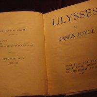 Joyce és örökösei – Grass: Kutyaévek